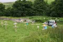 Glensherup isolated mating apiary summer 2016 (2)
