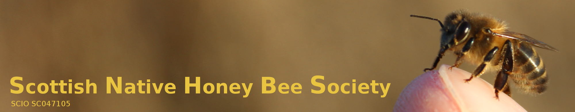 Scottish Native Honey Bee Society (SNHBS)